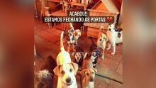 Após 6 anos de trabalho, ONG Guarda Animal fecha as portas em Campo Grande