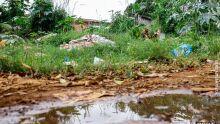 Plantio de grama em terrenos sem construção pode evitar despejo de lixo, diz vereador