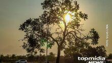 Semana da Primavera começa com calor recorde, La Niña e sem chuvas