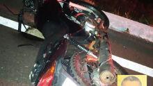 Motociclista bate em tamanduás, cai e morre na MS-338