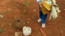 Dourados têm 14 casos de dengue por dia