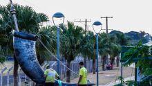Quarta-feira começa gelada em Campo Grande, mas sol aparece e temperaturas sobem