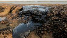 Novas porções de óleo foram encontradas no litoral sudeste