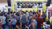 Carnavalescos rebatem deputados e sugerem até 'calcinhaço' em defesa da cultura