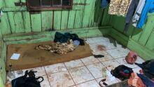 Índios são resgatados de trabalho análogo à escravidão em mandiocal em Itaquiraí