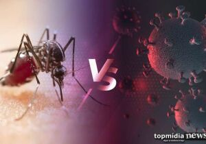 Bolsonaro erra ao dizer que covid acabou com a dengue: em 2020, 42 morreram em MS