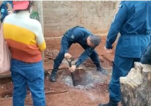 Sobrinha mata tio a marteladas e enterra corpo no quintal de casa