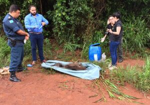 Corpo é encontrado dentro de tambor de plástico na fronteira