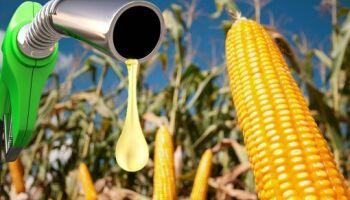 Usina de etano de milho será instalada em 2021 e criará mais de 200 empregos formais em MS