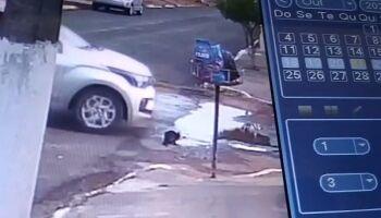 Vídeo: mulher é investigada por atropelar gato de propósito