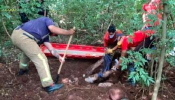 Corpos são encontrados em cova rasa na fronteira