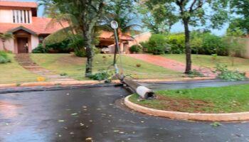 Tempestade derruba árvores e postes no Jardim das Paineiras; sem previsão para religar luz