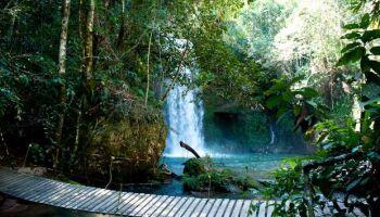 Costa Rica dá exemplo no enfrentamento ao coronavírus