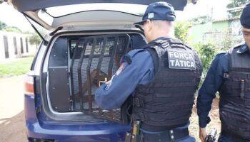 Homem que pulou em córrego para fugir da polícia será ouvido hoje em Campo Grande