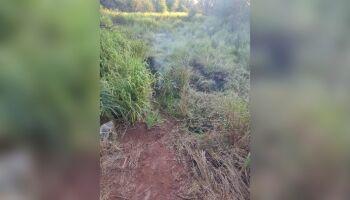 Mulher encontrada carbonizada é identificada e estava desaparecida desde sábado