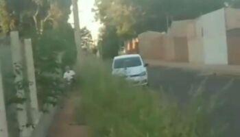 Homem filma idoso abusando de cachorro no Rita Vieira