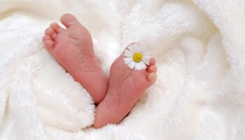 Apesar das muitas despedidas, nascimentos ainda superam mortes em MS