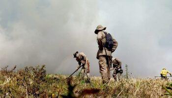 Plano de Manejo Integrado do Fogo é instituído para prevenir e combater incêndios florestais