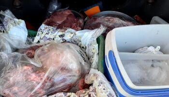 Pai e filho são presos por furtar e matar boi de chácara em Rio Verde