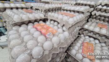 Com preço da carne das alturas, veja onde encontrar cartela de ovos mais barata