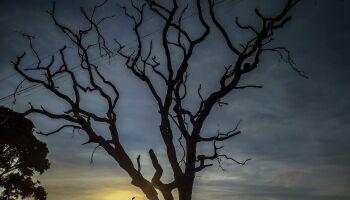 'Sextou' com tempo firme e seco em Mato Grosso do Sul