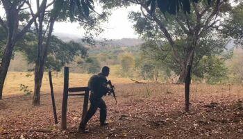 'Muito tiro', diz morador de Goiás sobre ação da polícia contra serial killer do DF