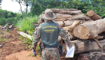 Infrações ambientais crescem em MS e multas chegam a R$ 9 milhões