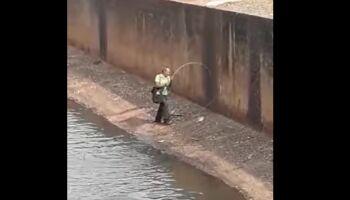 Vídeo: pescador pega peixes em córrego com esgoto e vende para cidade inteira de MS