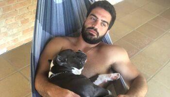 Latam suspende transporte de animais após cachorro morrer asfixiado
