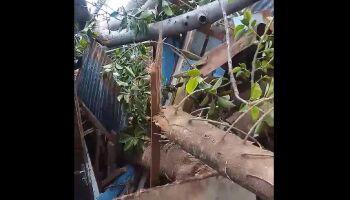 Casa de vigilante se resume a escombros e vaquinha é esperança no São Lourenço (veja vídeo)