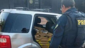 PRF prende traficante de 21 anos com mais de meia tonelada de maconha