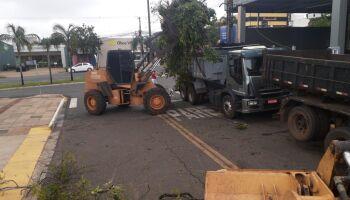 Prefeitura dá resposta rápida a danos mais urgentes da tempestade em Campo Grande