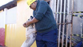 AMICÃO viu idoso agonizar ao morrer queimado na região das Moreninhas