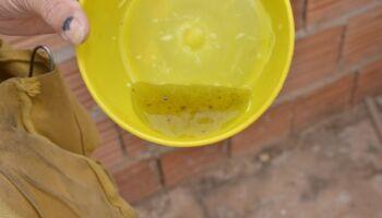 Casos de dengue tiveram redução nos cinco primeiros meses do ano em Campo Grande