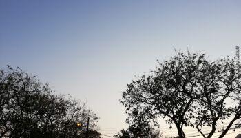 Solzinho bem-vindo: previsão de calor e tempo firme neste sábado em MS
