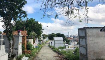 Homem desenterra corpo da avó e dança com o cadáver pelas ruas de Manaus