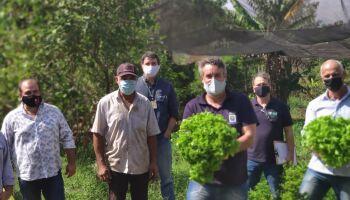 Produtores de hortifrúti de Campo Grande se unem para abastecer a cidade