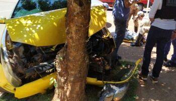 Mulheres fogem da polícia e arrebentam carro com cocaína contra árvore em Nova Andradina
