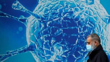 Estudo diz que dengue pode fornecer imunidade contra a covid-19