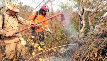 Sem provas, ministro do Meio Ambiente diz que culpa de queimadas é de MS