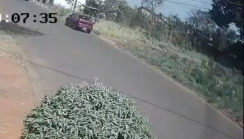 VÍDEO: criminoso bota fogo no Rita Vieira e mostra que incêncidios têm responsáveis