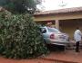 Motorista e passageiro ficam feridos após veículo colidir em árvore e muro