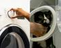 Gato sobrevive após passar 1h em máquina de lavar roupa ligada