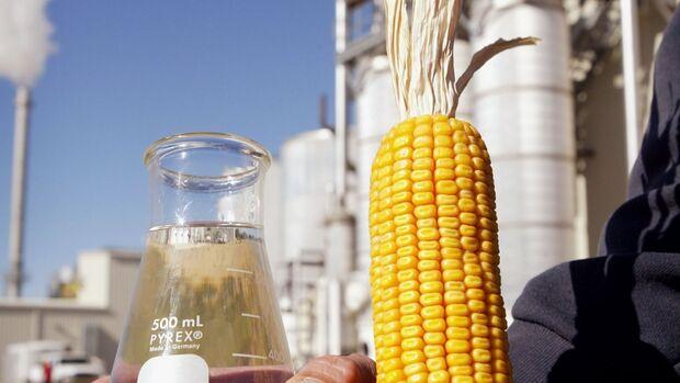 Destaque na produção de grãos, MS terá primeira indústria de etanol de milho