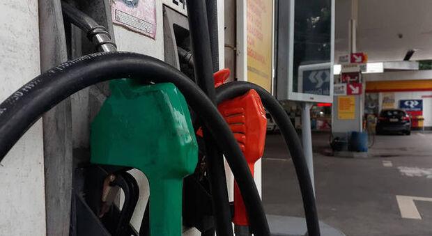 2ª alta em novembro: preço da gasolina sobre 4% nesta quinta-feira