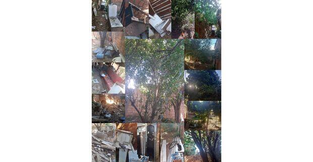 Boa ação: vizinhos se mobilizam e limpam casa de acumulador no Vespasiano Martins