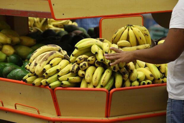 Banana sobe quase 30% em Campo Grande e junto da energia foi vilã da inflação em dezembro