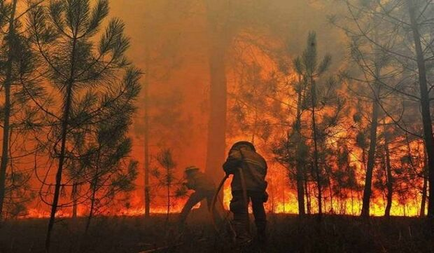 Azambuja anuncia R$ 56 milhões para combate permanente aos incêndios florestais