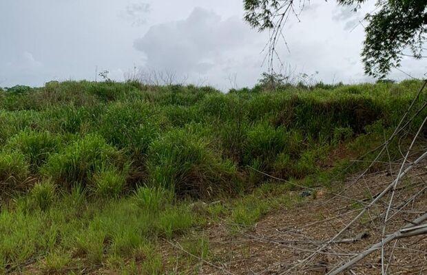 Corpo de homem é encontrado nu no meio do mato em Costa Rica