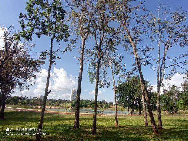 Quarta-feira de feriado será de calor em Mato Grosso do Sul